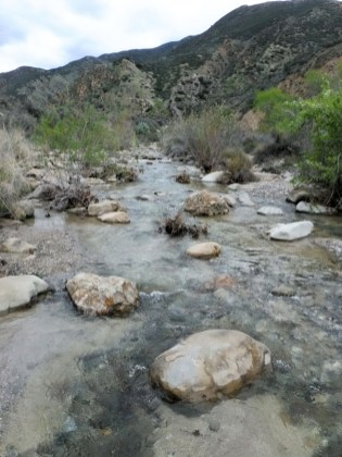 Fish Creek is full of water