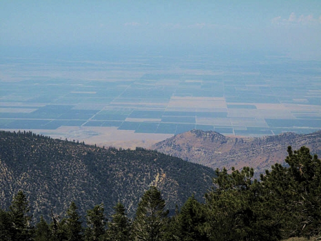 North View from Mt Pinos