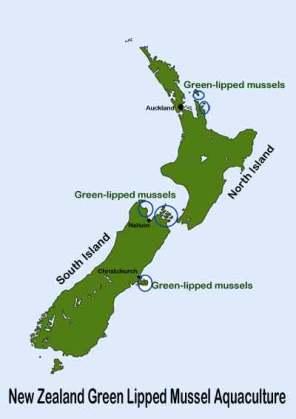 moules vertes lieux élevage