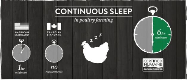 continuous sleep