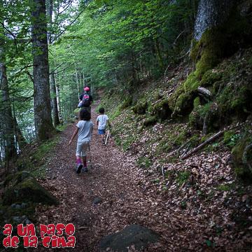 Bosque de Turieto
