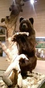 Karhu-näyttely
