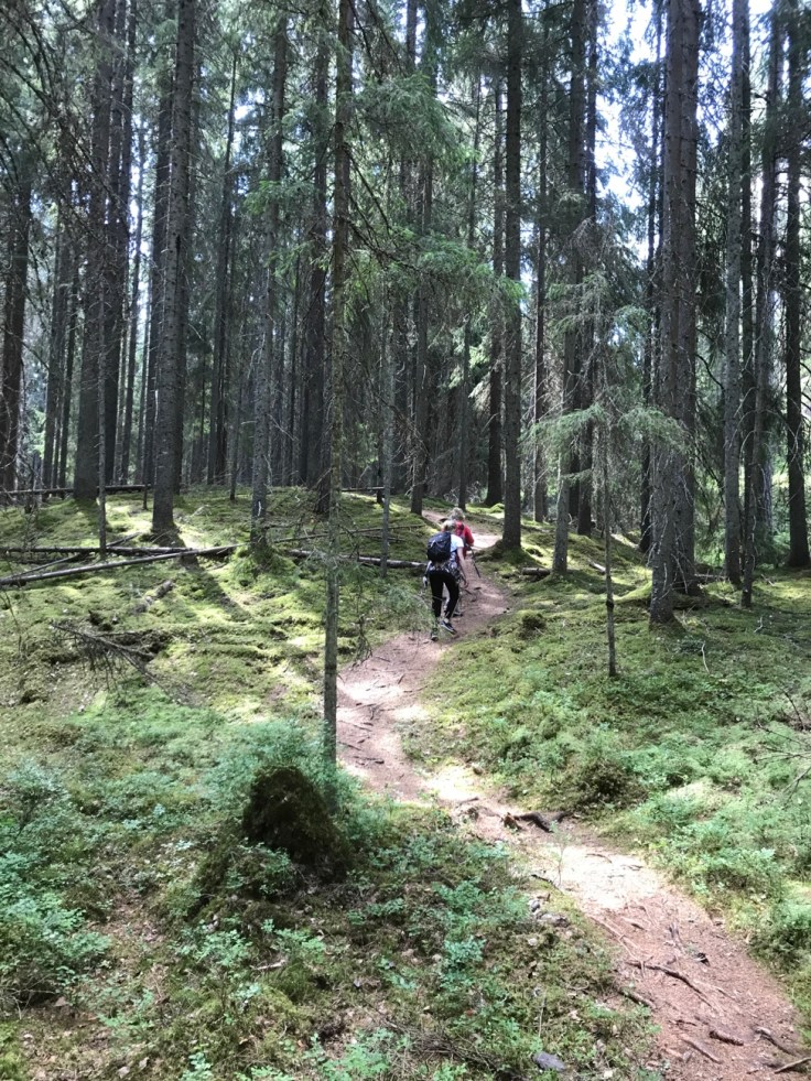 Liesjärvi, Liesjärven kansallispuisto, retkellä lasten kanssa