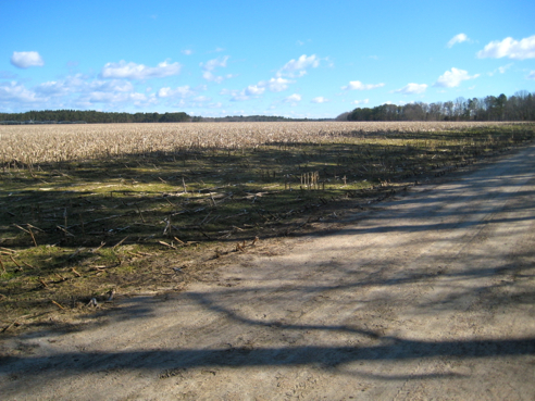 field trail