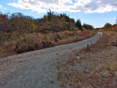 the cross refuge trail