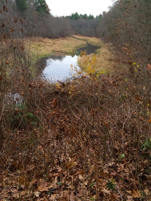 satucket river, east bridgewater, ma