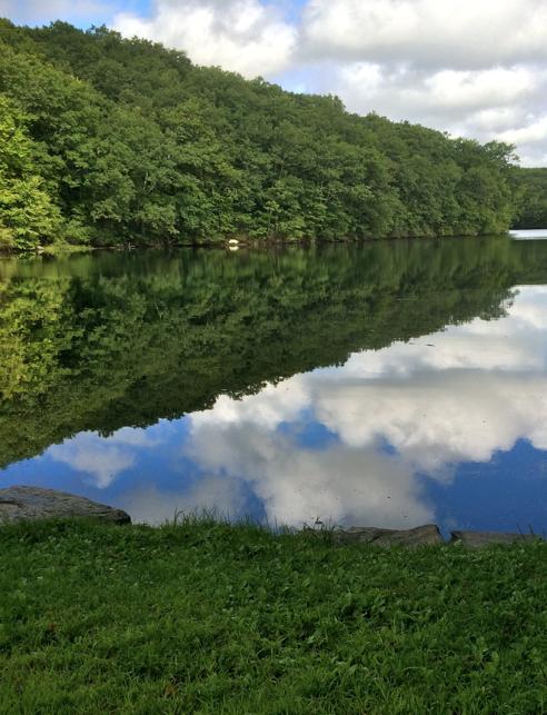 Green Fall Pond
