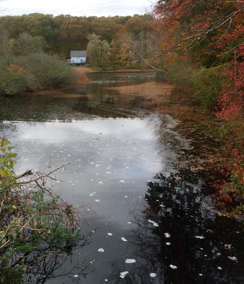 hallville pond