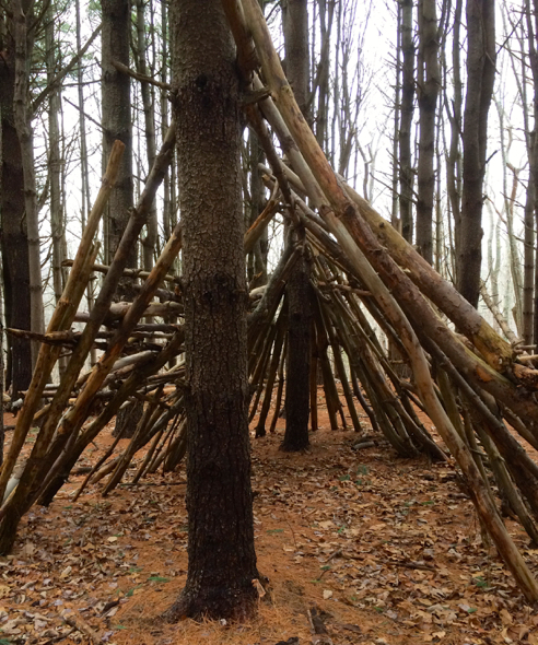 pine circle lean-to