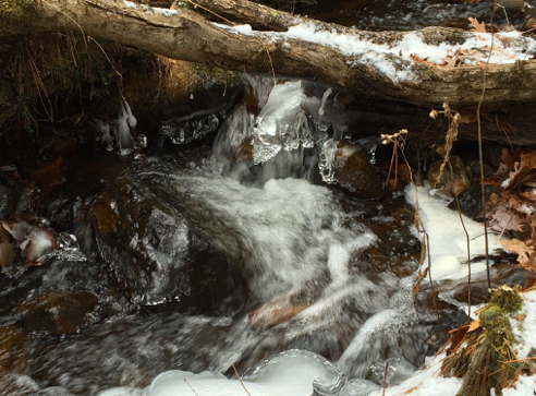 ice on coney brook