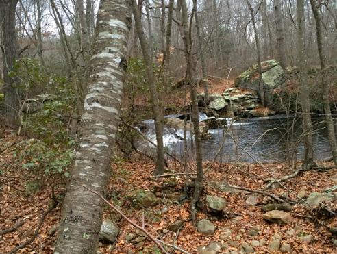 dam remains