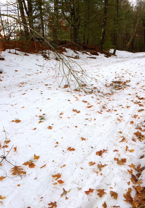 airline trail conditions