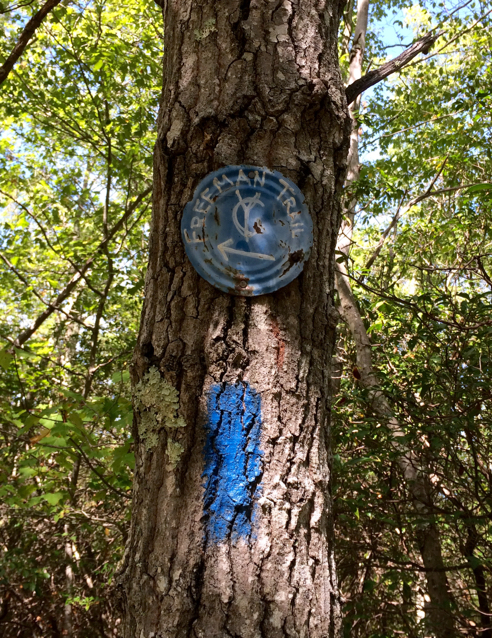 boy scout's blue trail