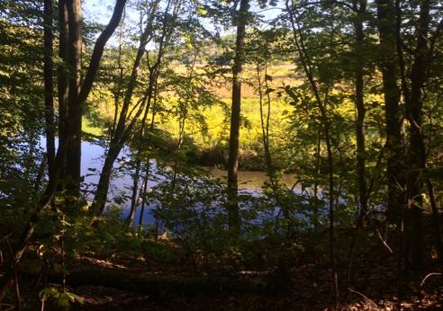 The Blackstone River