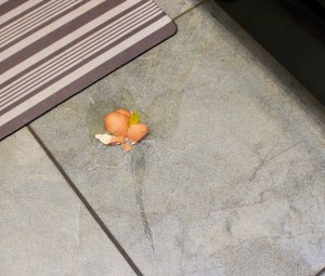 broken egg on floor
