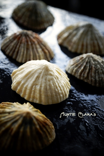 Limpet Mould Tutorial: Handmade Soap Imitating Nature
