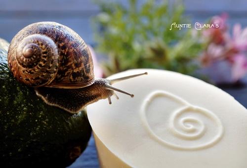 Snail Soap by Auntie Clara's