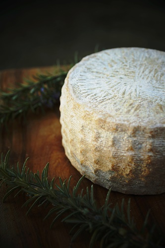 Mature head of Langbaken Karoo Crumble cheese