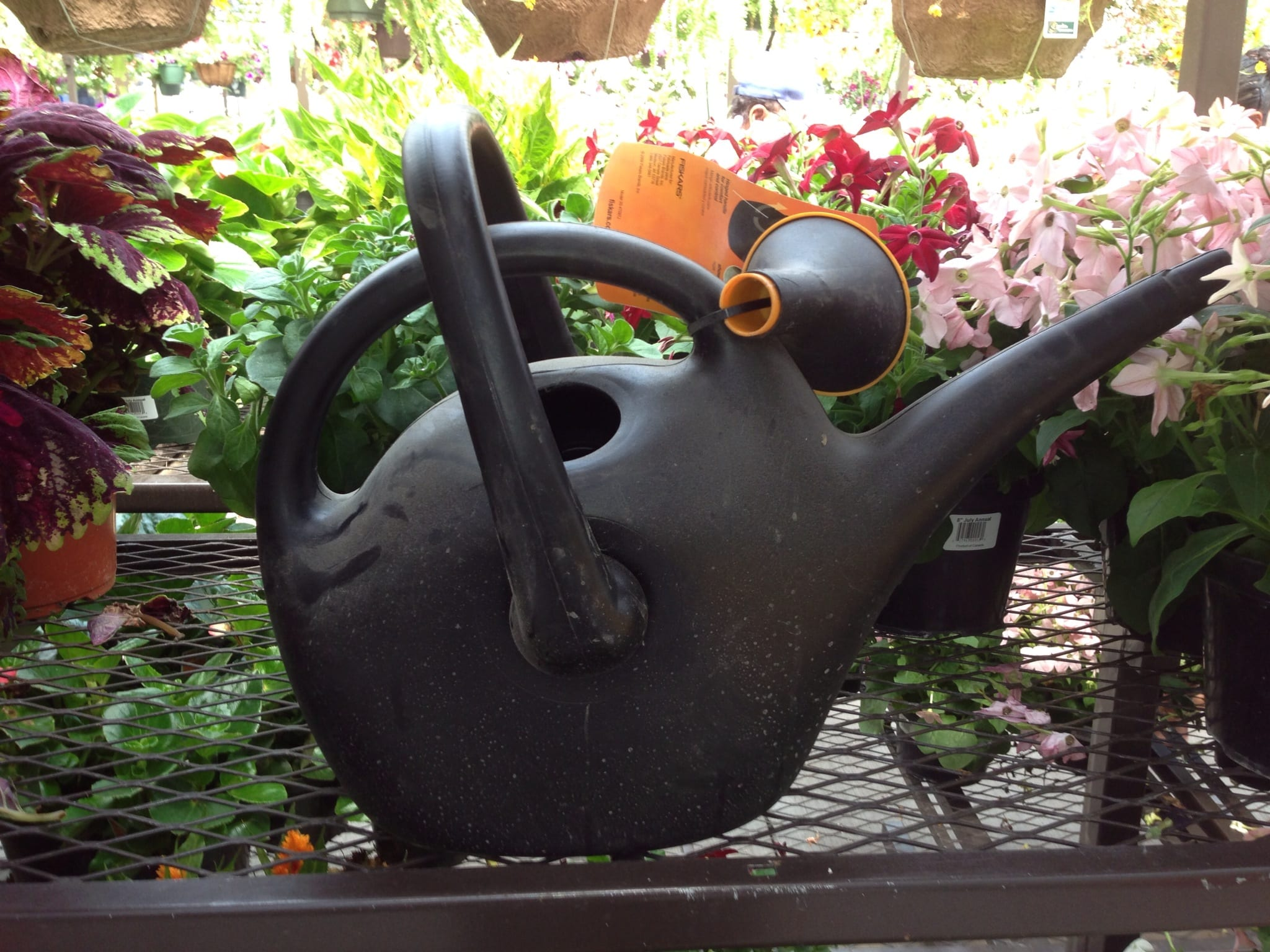 auntie stress Easy Pour Watering Can