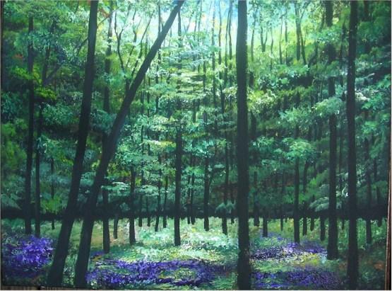 Summer's Deep Woods