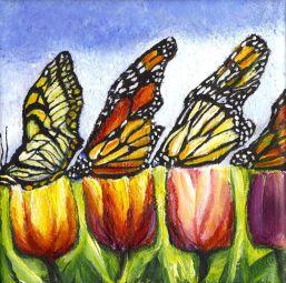 butterflies on c 4 5 6