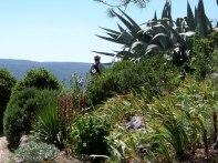 Dr B amidst the cacti at Cornillon