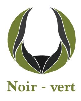 Noir/vert
