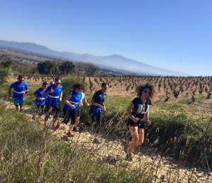 Course à pied  : La virade dans les vignes