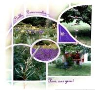 visite du jardin avec le gabarit MADRID