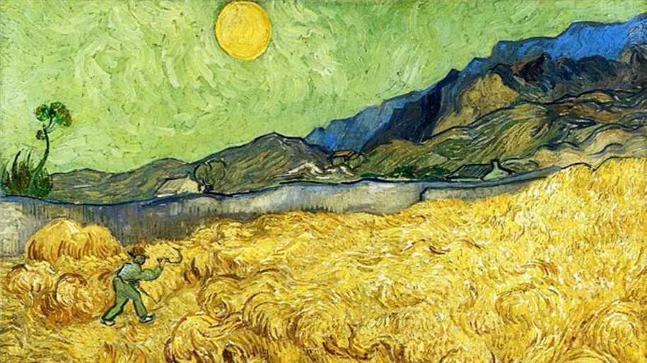 Vincent Van Gogh: a symphony in yellow