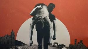 Dogman: i simbolismi della trama nel film di Matteo Garrone