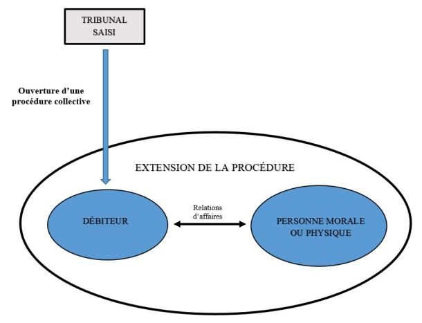02425ecbfe5 L extension de la procédure de sauvegarde  confusion de patrimoines ...
