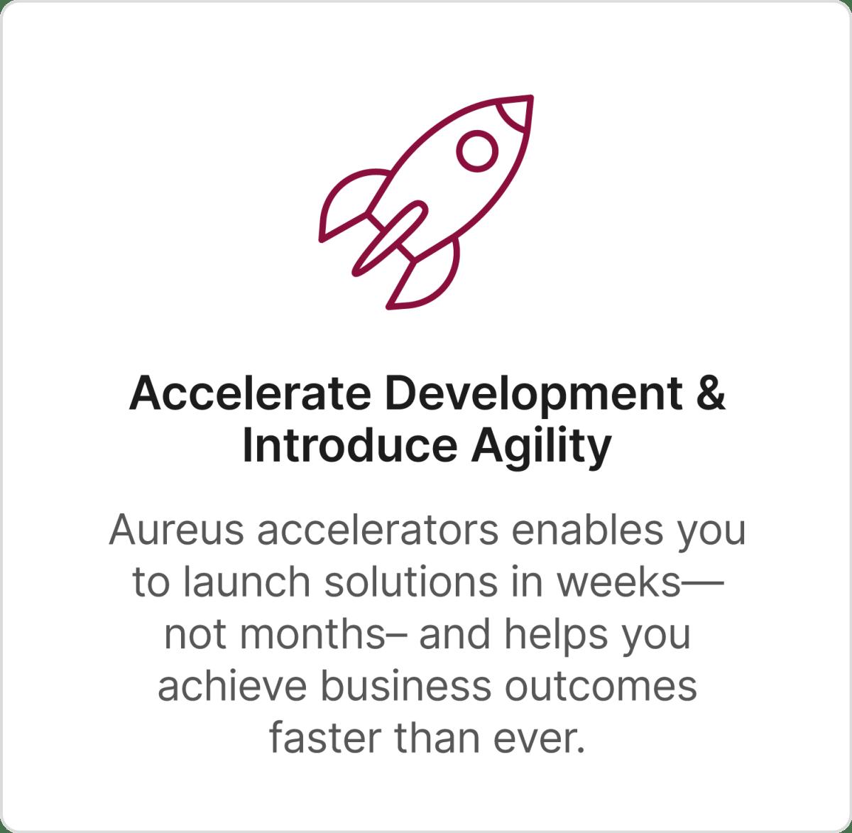 Accelerate Development + Introduce Agility