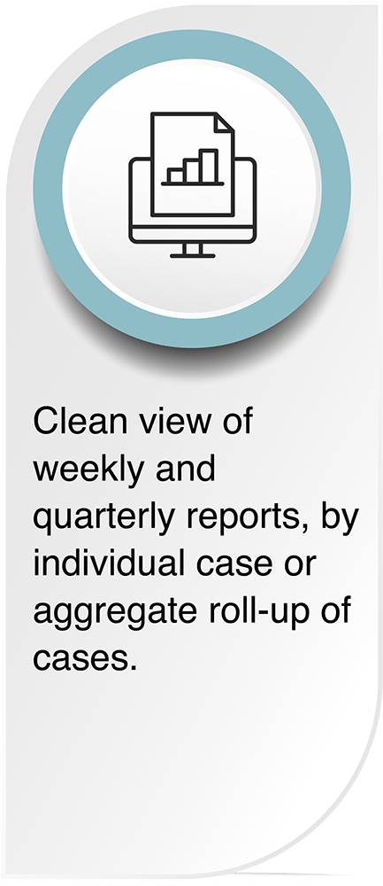CleanView