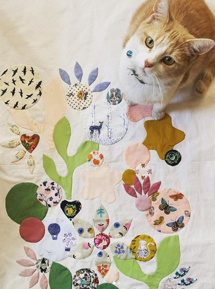 applique and kitty