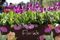 floriade_006