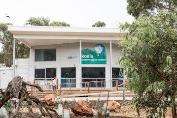 koala_conservation_centre_1
