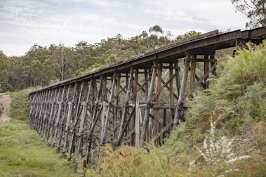 tony-creek-trestle-bridge_3