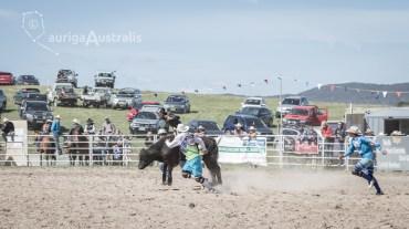 Bull_Riding_22