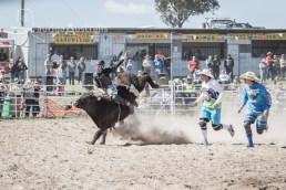 Bull_Riding_24