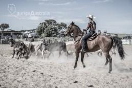Bungendore_Cowboys_6