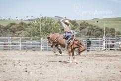 Saddle Bronc_4