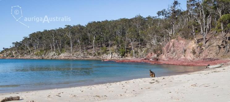 Barmouth_Beach_7
