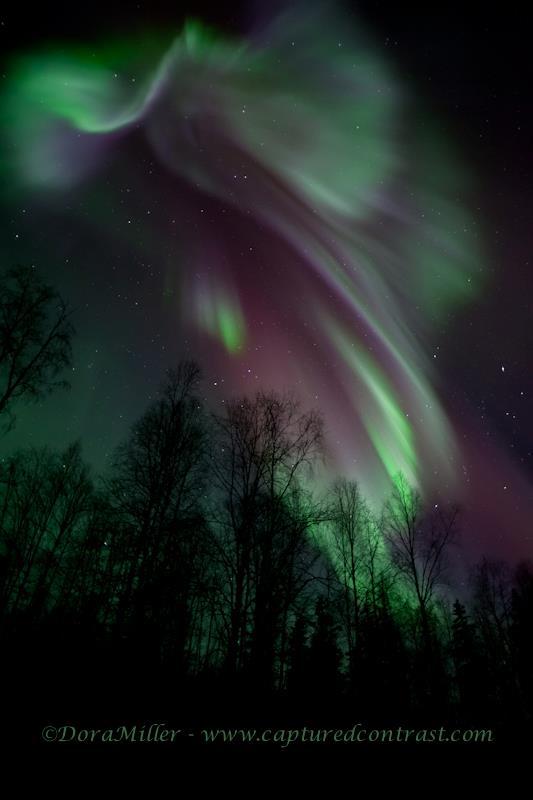 """""""Epic Aurora""""  by Dora Miller"""