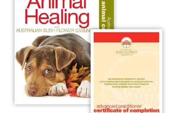 ACC002: Animal Correspondence Course