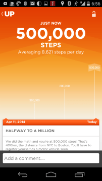500000 steps