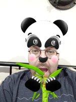 Panda Selfie Face