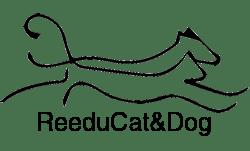 Rééducatdog – Cannes