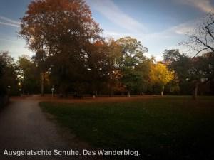 Witthausbusch