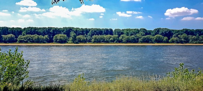 Kölnpfad Etappe 11: Zündorf – Rodenkirchen (9,4 km)